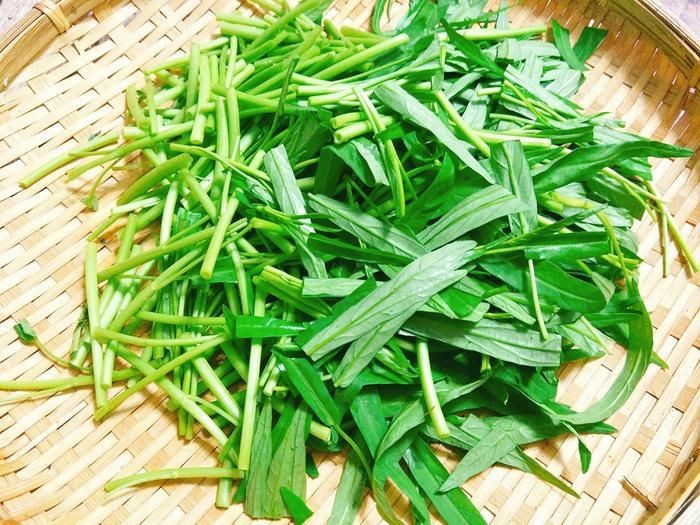 Cách làm 3 món ăn bài thuốc từ rau muống cực đơn giản, vừa thơm ngon lại giúp trị bệnh nhiều người mắc phải - Ảnh 1