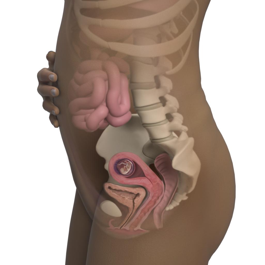 Mang thai tuần 11: Em bé đang khá bận rộn với việc đá, co giãn đôi chân - Ảnh 1