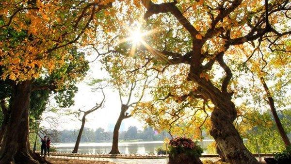 Dự báo thời tiết 16/11: Hà Nội nắng trước khi đón gió mùa đông bắc - Ảnh 1