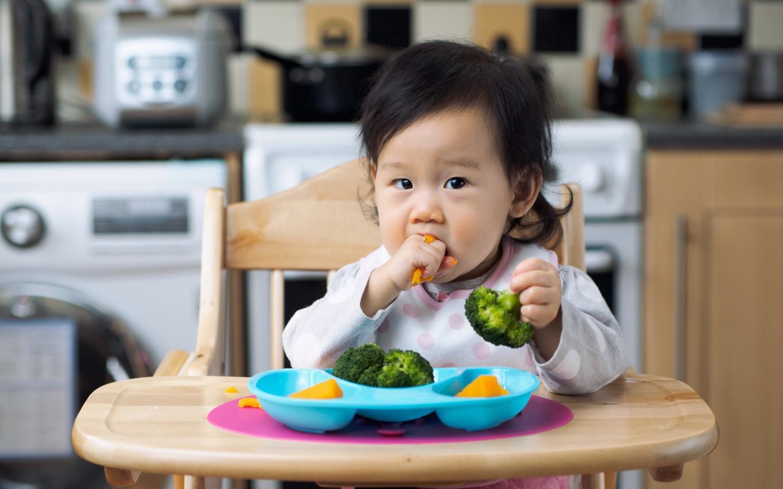 Chuyên gia Viện dinh dưỡng mách mẹ cách cho bé ăn dặm kiểu Nhật - Ảnh 3