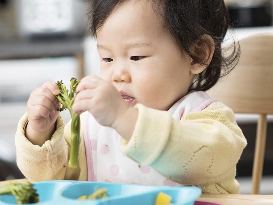Thực đơn ăn dặm cho bé 10 tháng tuổi cân bằng, khoa học giúp cân nặng tăng nhanh - Ảnh 3