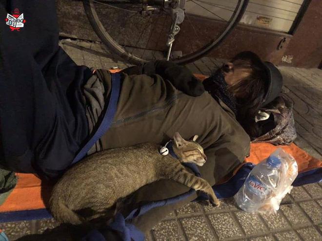 Chú mèo nhỏ nằm ngủ ngon lành trong vòng tay người đàn ông lang thang trên vỉa hè khiến nhiều người thương cảm - Ảnh 2