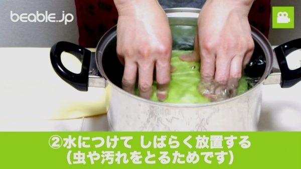 Không đủ thời gian nấu nướng hãy cho cả búp bắp cải vào nồi cơm điện, hơn 30 phút là có món ngon xuất sắc - Ảnh 3
