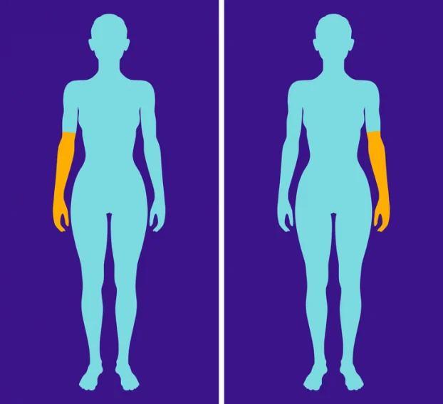 8 dấu hiệu từ cơ thể cho thấy bạn sẽ sống thọ hơn người khác - Ảnh 7
