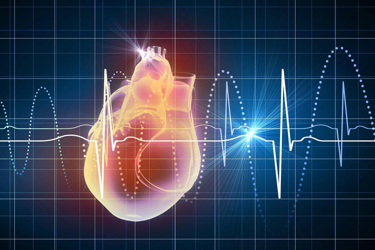 Đây là những căn bệnh về tim thường gặp nhất mà bạn không nên chủ quan bỏ qua - Ảnh 3