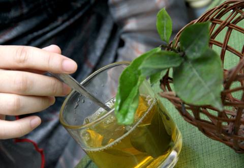 Bà bầu uống nước trà xanh mỗi ngày có tốt không? - Ảnh 2