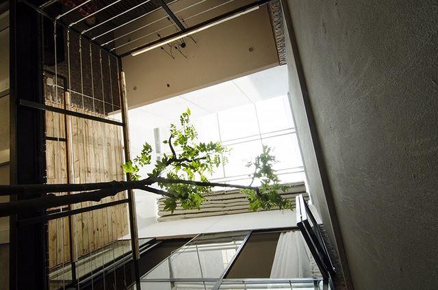 Nhà 50m2 hai tầng trong hẻm vẫn siêu thoáng với chi phí 800 triệu đồng - Ảnh 5