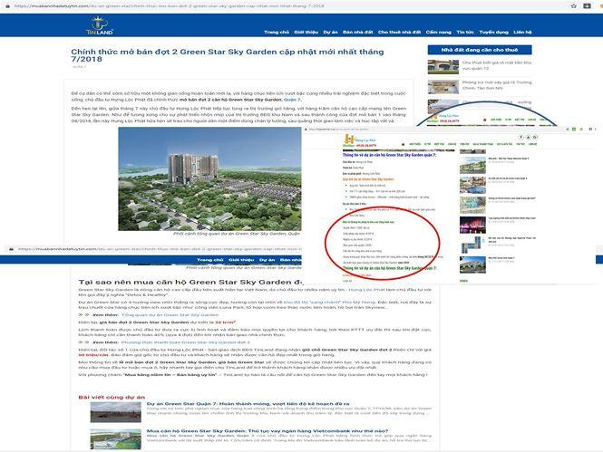 Xây 'chui' hơn 100 căn biệt thự ở Sài Gòn, chủ đầu tư nói gì? - Ảnh 2