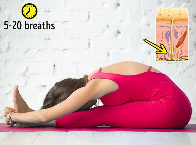 8 tư thế yoga vừa đẹp dáng vừa cải thiện mái tóc gãy rụng - Ảnh 4