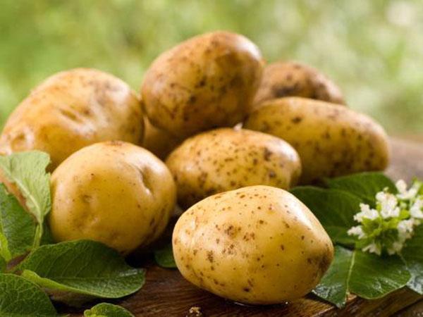 Ăn ngay 7 loại thực phẩm này, đảm bảo tăng cân mà dáng vẫn đẹp vẫn ngon - Ảnh 5