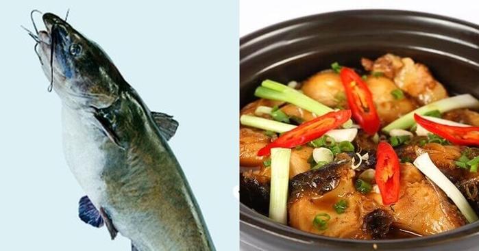"""6 loại cá """"quen nhẵn mặt"""" nhưng chứa hàm lượng thủy ngân cao, chuyên gia khuyên không ăn nhiều - Ảnh 1"""