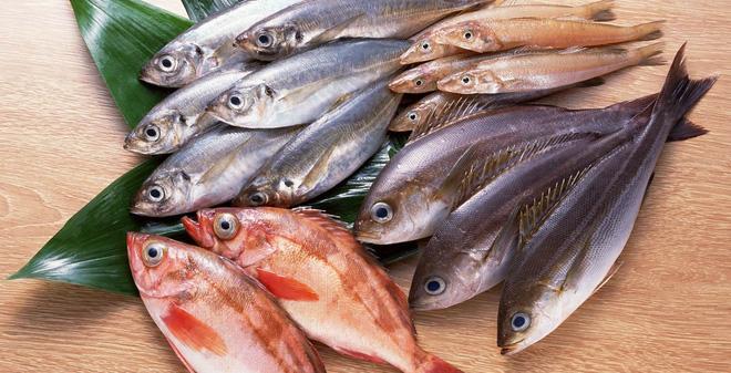 """6 loại cá """"quen nhẵn mặt"""" nhưng chứa hàm lượng thủy ngân cao, chuyên gia khuyên không ăn nhiều - Ảnh 9"""