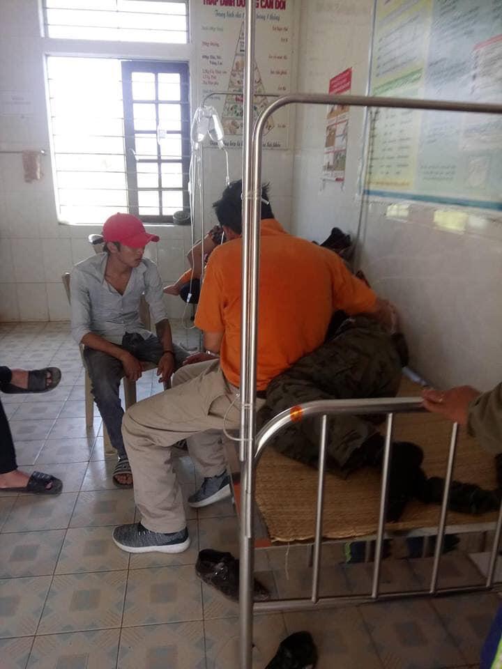 Đi tảo mộ, 7 người bị ong đốt phải nhập viện - Ảnh 1