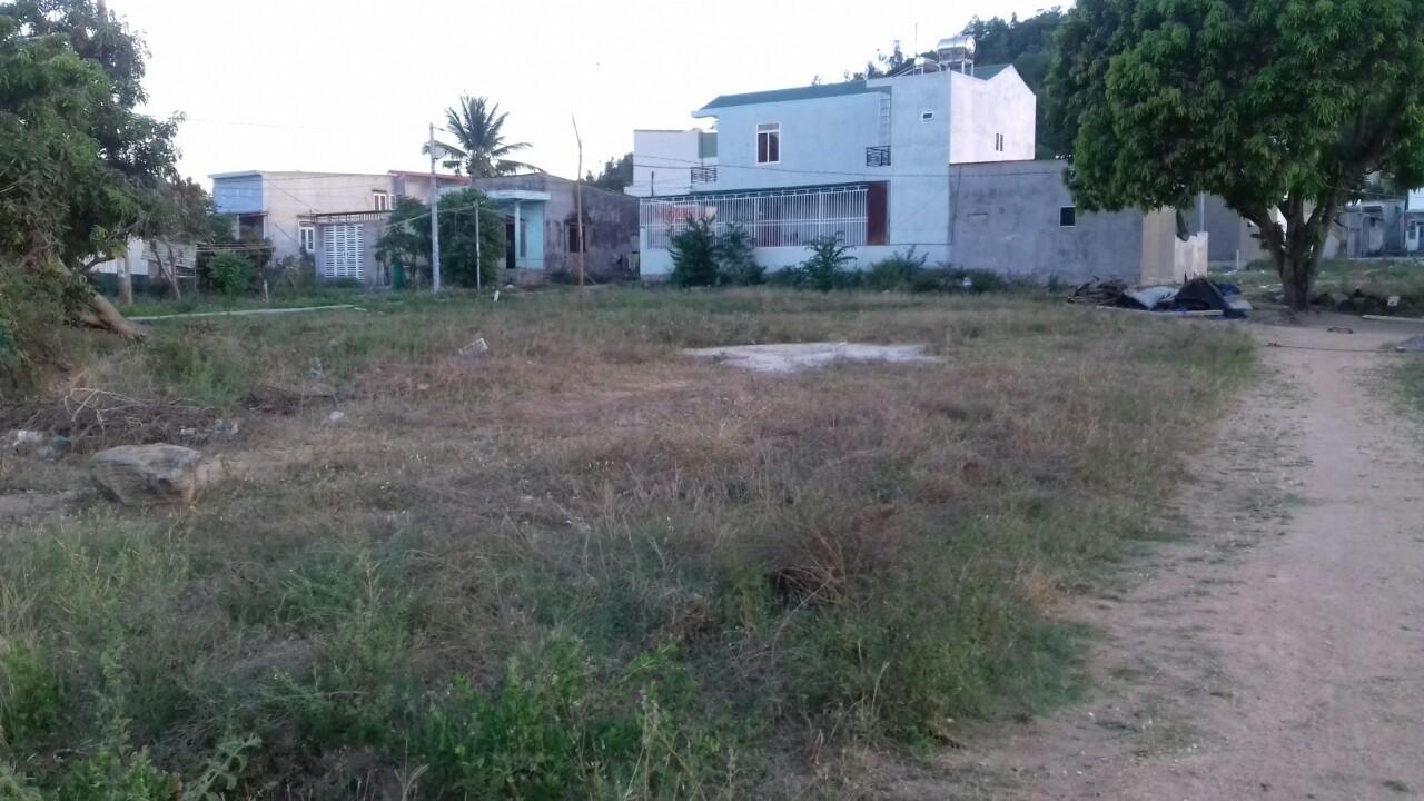 Tràn lan sai phạm sử dụng đất công ở một vùng quê - Ảnh 1
