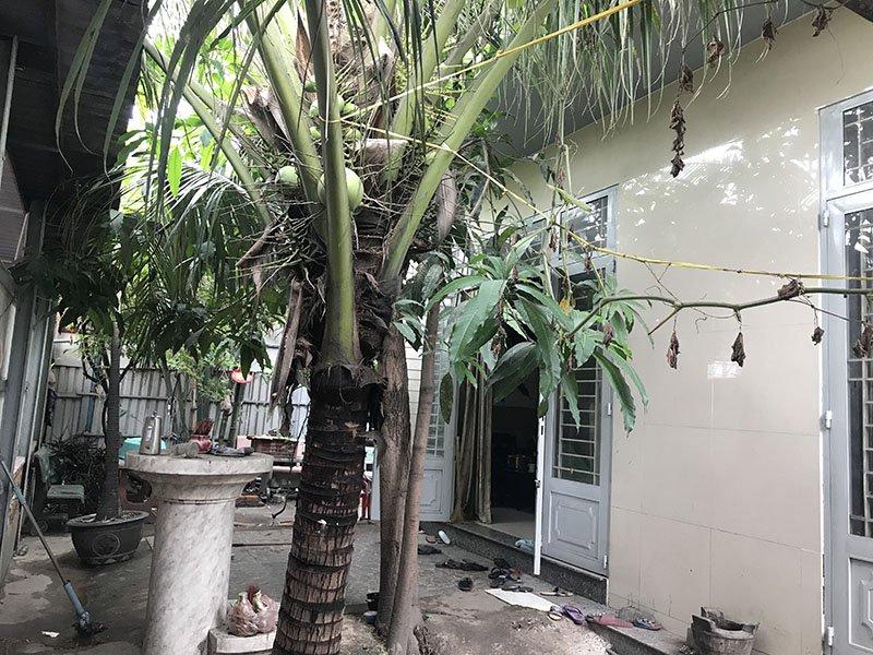 Chuyện về căn nhà ở Sài Gòn có 9 người chết bí ẩn - Ảnh 3