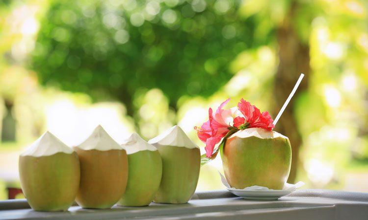 Nước dừa khiến bạn tăng cân hay béo lên trông thấy? - Ảnh 4
