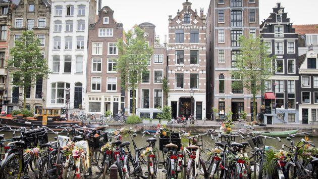 6 phương pháp nuôi dạy trẻ hạnh phúc của người Hà Lan - Ảnh 6