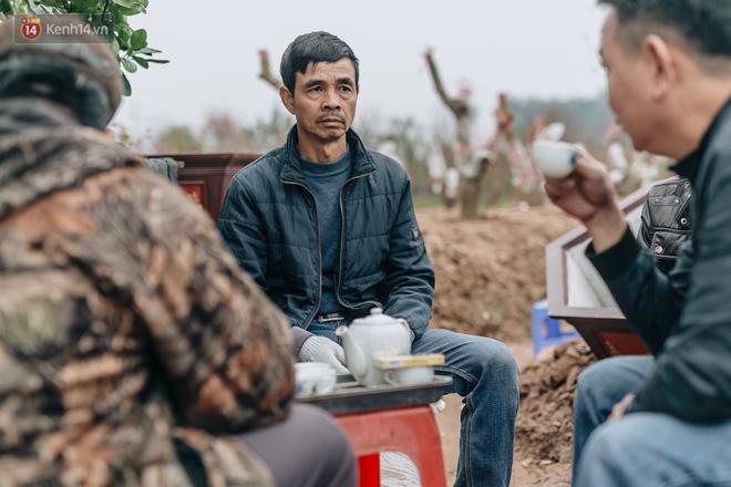 Gần 200 gốc đào của người dân Bắc Ninh bị chặt phá trong đêm: 'Tết năm nay còn chả có bánh chưng mà ăn' - Ảnh 11