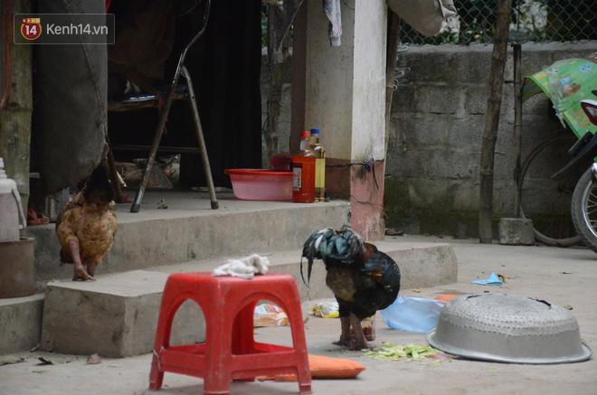 Tết buồn của cặp vợ chồng chênh lệch 43 tuổi ở Hà Nam: Không đào quất, không bánh chưng, 3 đứa con thơ phải mặc đồ cũ - Ảnh 5