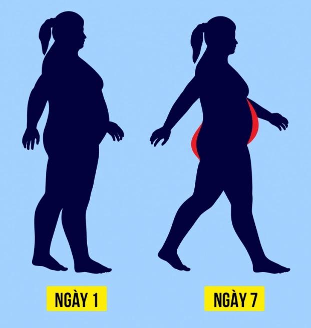 Cách đi bộ theo lịch trình 21 ngày giúp giảm cân, đốt mỡ thừa hiệu quả - Ảnh 1