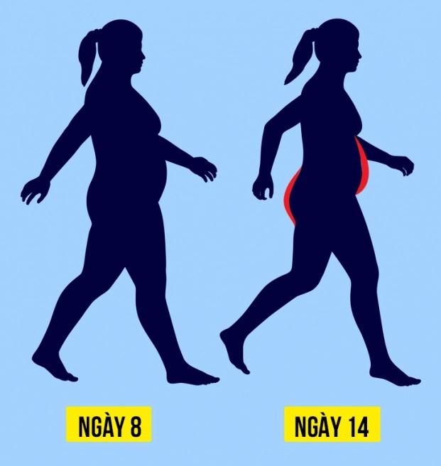 Cách đi bộ theo lịch trình 21 ngày giúp giảm cân, đốt mỡ thừa hiệu quả - Ảnh 2