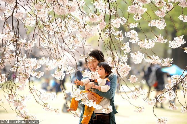 5 quy tắc nuôi dạy con của cha mẹ Nhật mà mọi phụ huynh nên học hỏi - Ảnh 1