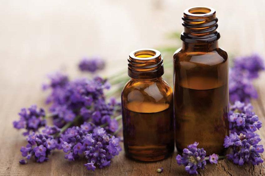 5 loại tinh dầu tự nhiên có thể xóa mờ đốm đen, ngăn ngừa lão hóa hiệu quả - Ảnh 2