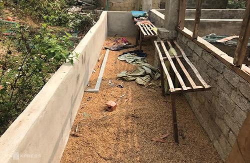 Thêm ba người bị bắt trong vụ sát hại thiếu nữ giao gà ở Điện Biên - Ảnh 1