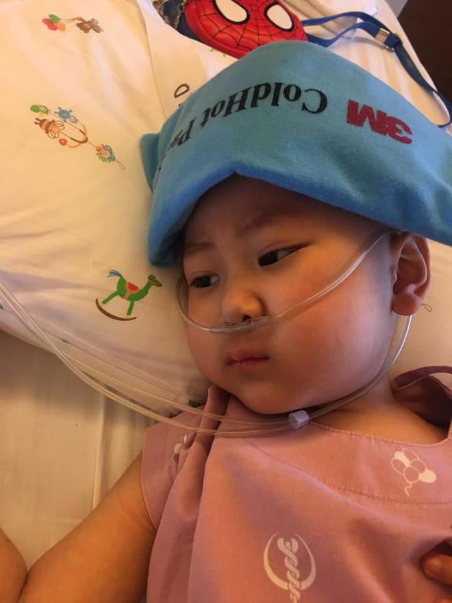 Quang Minh, em bé 4 tuổi chiến đấu với bệnh ung thư máu bằng tất cả niềm lạc quan đã ra đi mãi mãi - Ảnh 4