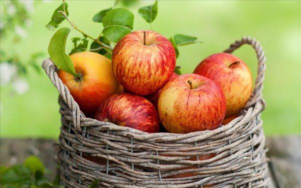 Xay nhuyễn quả táo với 2 thứ này để đắp mặt, ngăn ngừa đến 10 năm lão hóa, duy trì làn da căng mịn, trắng hồng - Ảnh 1