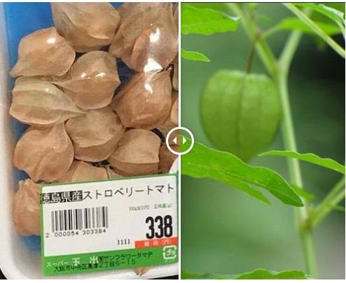 Những thực phẩm rẻ như bèo ở Việt Nam, sang Nhật 'lột xác' thành cao lương mỹ vị - Ảnh 3