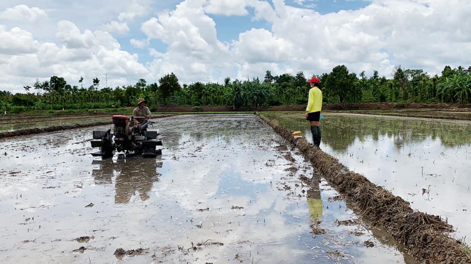 'Phát sốt' với hình ảnh H'Hen Niê bì bõm lội ruộng làm đồng, ngồi chồm hổm ăn cơm với cá khô - Ảnh 1