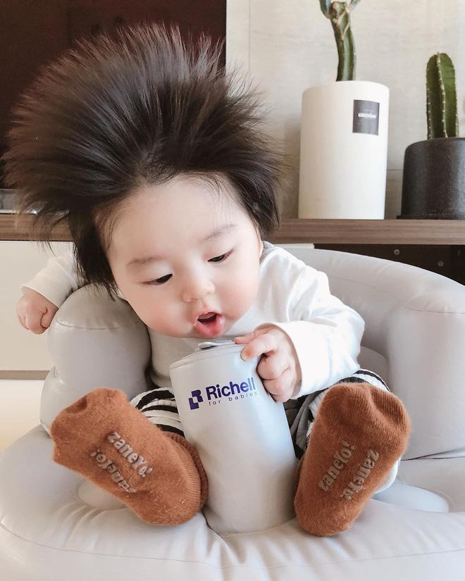 Cậu bé Hàn Quốc với quả đầu chôm chôm đáng yêu đến mức ai cũng muốn đem về nuôi - Ảnh 3