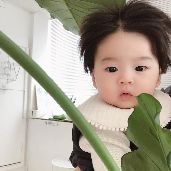 Cậu bé Hàn Quốc với quả đầu chôm chôm đáng yêu đến mức ai cũng muốn đem về nuôi - Ảnh 5