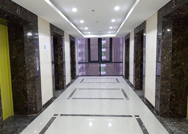 Cư dân chung cư Lạc Hồng Lotus tố chủ đầu tư 'ăn' bớt cửa thang máy - Ảnh 2