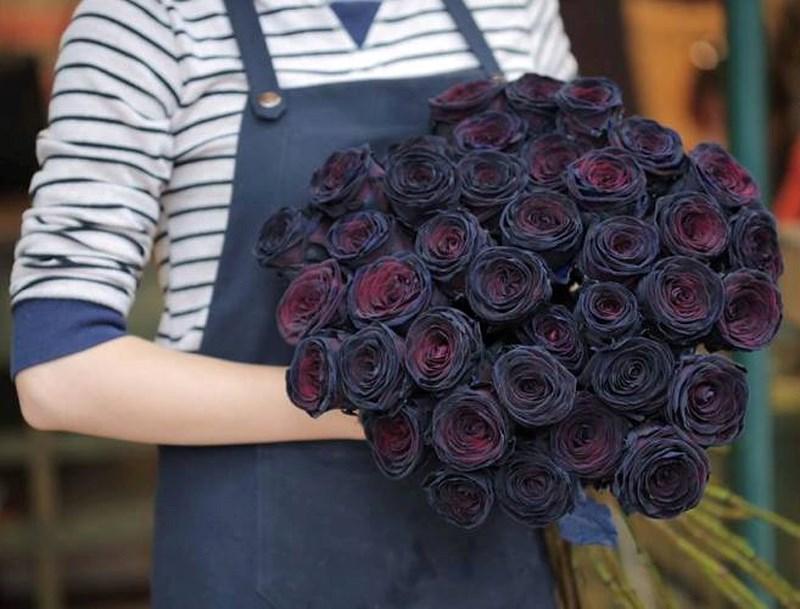 Hoa hồng đen có ý nghĩa gì mà lại bí ẩn và quý hiếm đến thế - Ảnh 3