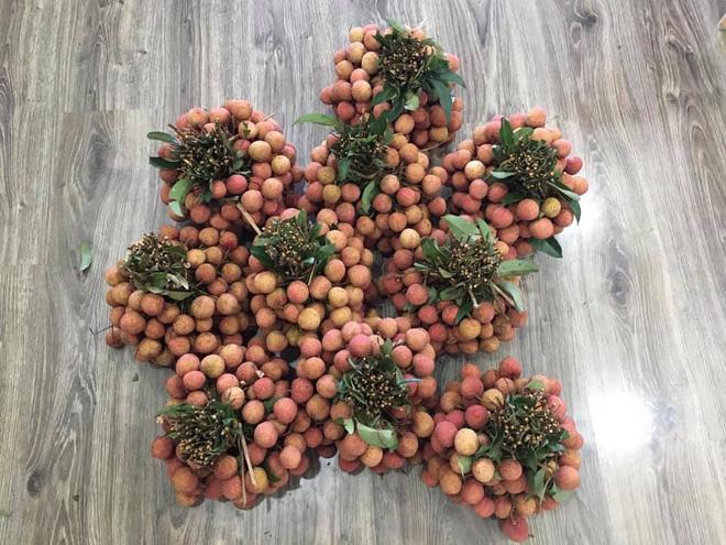 Dân mạng Việt khoe những trái vải bán trong siêu thị Nhật, 120k được mỗi 7 quả mà vẫn 'cháy hàng' - Ảnh 3