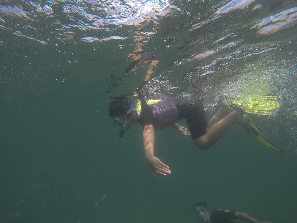 Cùng con khám phá tình yêu đại dương tại Vinpearl - Ảnh 7