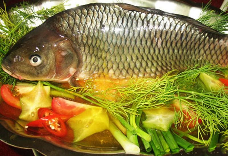 Kết hợp thế này khi nấu ăn, cá chép không chỉ ngon, bổ lại có thể được sử dụng làm thuốc chữa bệnh - Ảnh 2