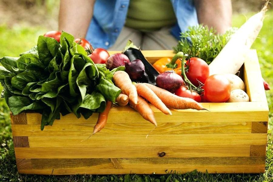 Những loại thực phẩm nên được sử dụng trong chế độ Detox kết hợp ăn uống - Ảnh 2