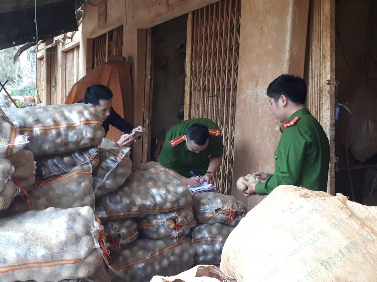 """Bắt quả tang cơ sở """"phù phép"""" 1.000kg khoai tây Trung Quốc nhái Đà Lạt - Ảnh 1"""