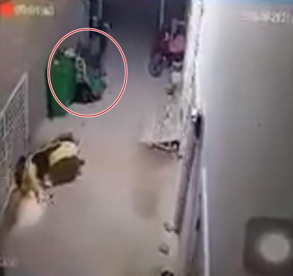 Clip cô gái bị bạn trai đấm, đá túi bụi khiến cộng đồng mạng bức xúc - Ảnh 2