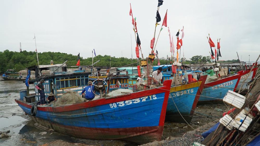 Bão số 9 đổ bộ vào Bình Thuận - Bến Tre, mưa lớn lan tới Trung Trung Bộ - Ảnh 1