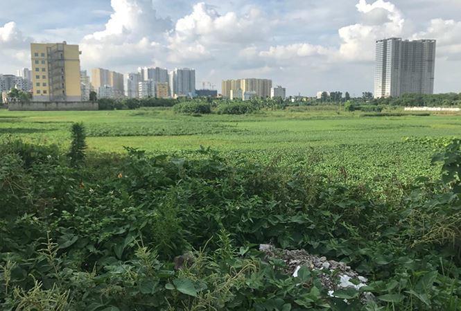 Công bố loạt dự án 'đất vàng' bỏ hoang bị Hà Nội thu hồi - Ảnh 1