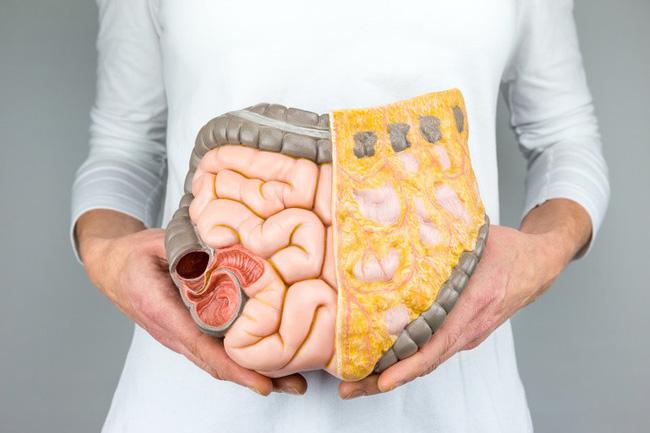 Đây mới là loại chất béo trong cơ thể cần loại bỏ đầu tiên vì nó vừa 'cứng đầu' vừa đe dọa sức khỏe của bạn - Ảnh 1