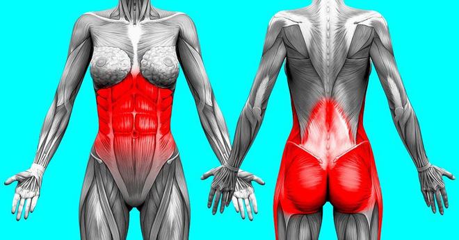 Kế hoạch tập thể dục 3 ngày để loại bỏ chất béo bụng và chuyển đổi cơ thể của bạn - Ảnh 1