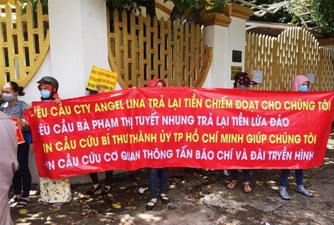 Angel Lina giăng dự án 'ma' ở Sài Gòn - Ảnh 1