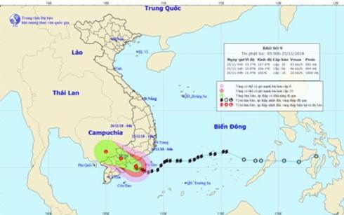 Thời tiết hôm nay: Bão số 9 (USAGI) đổ bộ, nguy cơ ngập lụt ở TP HCM - Ảnh 1