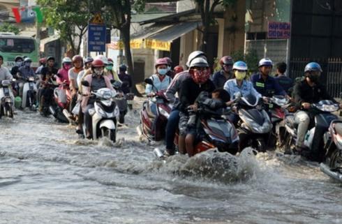 Thời tiết hôm nay: Bão số 9 (USAGI) đổ bộ, nguy cơ ngập lụt ở TP HCM - Ảnh 2