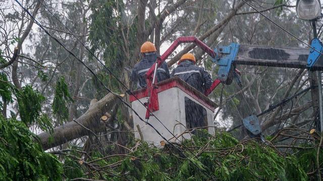 TP.HCM ngập diện rộng, cây ngã đè chết người đi đường - Ảnh 6